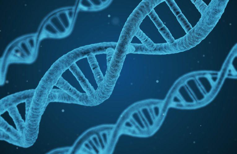 Pary starterów RNA koronawirusa używane w testach PCR są identyczne z ludzkim DNA