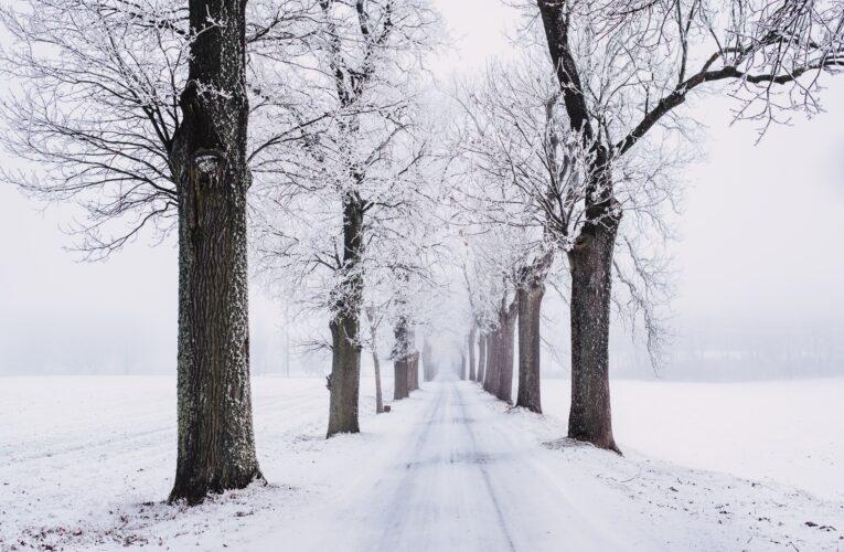 Czy śnieżna zima uchroni nas przed suszą?
