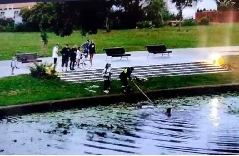 Młoda kobieta bez wahania weszła do wody, by uratować wyrzucone kocięta [NAGRANIE W ARTYKULE]