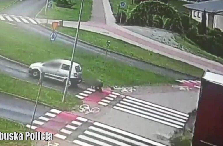 Zielona Góra: Potrącenie rowerzystki na przejeździe rowerowym [NAGRANIE W ARTYKULE]