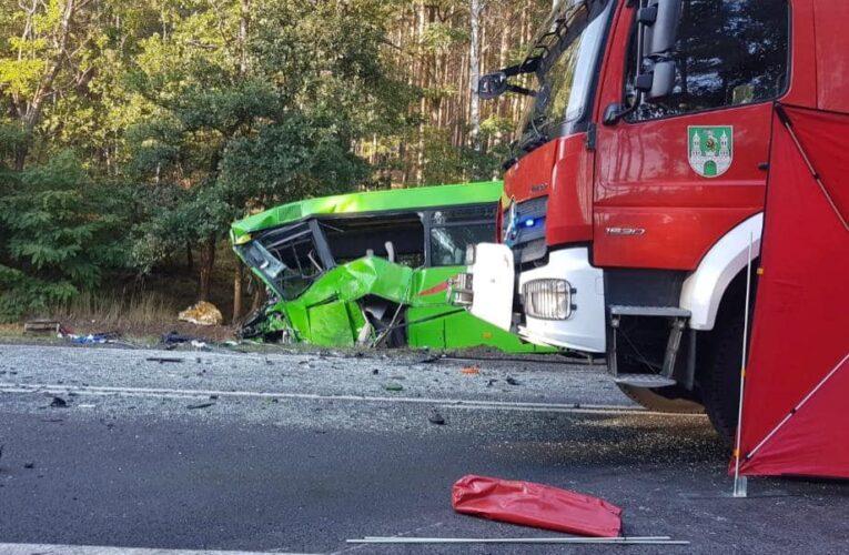 Tragiczny wypadek w okolicach Zielonej Góry. Wielu rannych, jedna osoba nie żyje