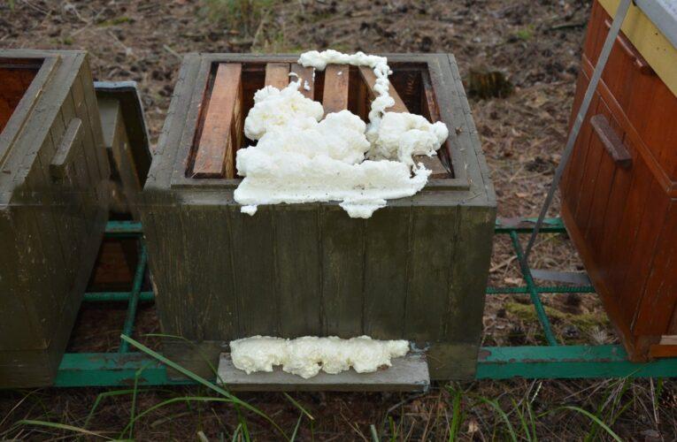 Tworzymirki: Nieznani sprawcy otruli blisko 420 tysięcy pszczół z pasieki